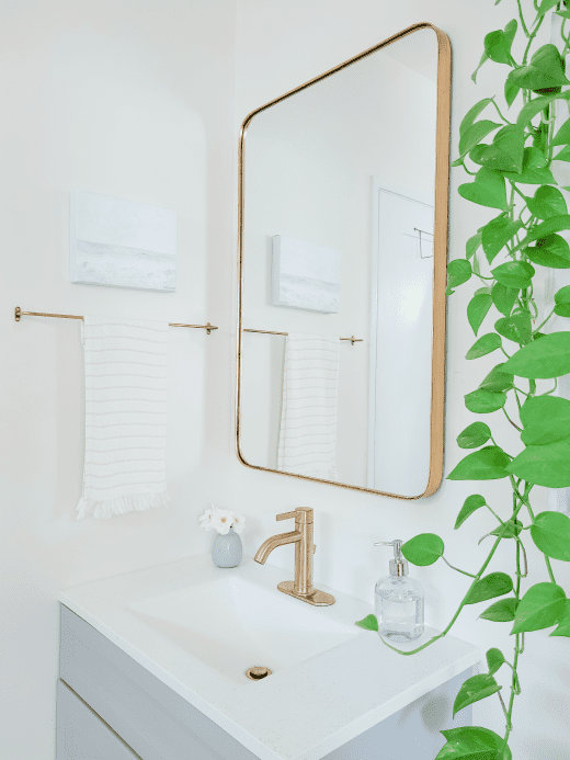 white bathroom with gold hardware and a hanging plant